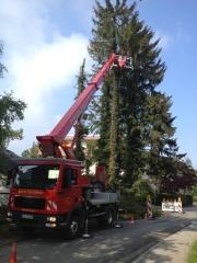 LKW Arbeitsbühne Bison P 300 KS Baumfällung 3.jpg